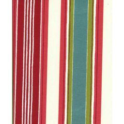 Aloe Berry Fabric